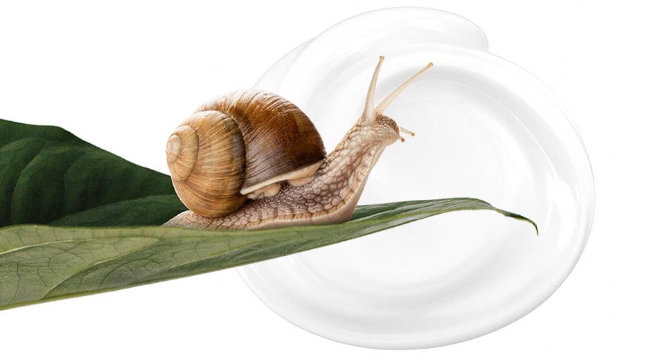 Molluscoo kosmetyki z wysoką zawartością śluzu ślimaka HELIX